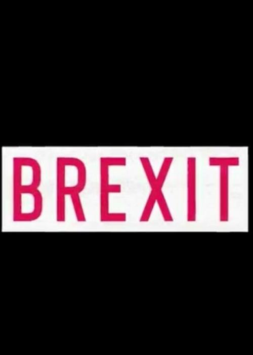 Brexit Fragmanı izle